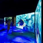 <!--:en-->Biodome Montreal<!--:-->