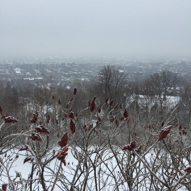 Montreal Holidays3