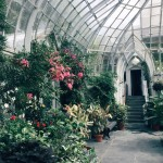 A Guide to Living Green in Montreal