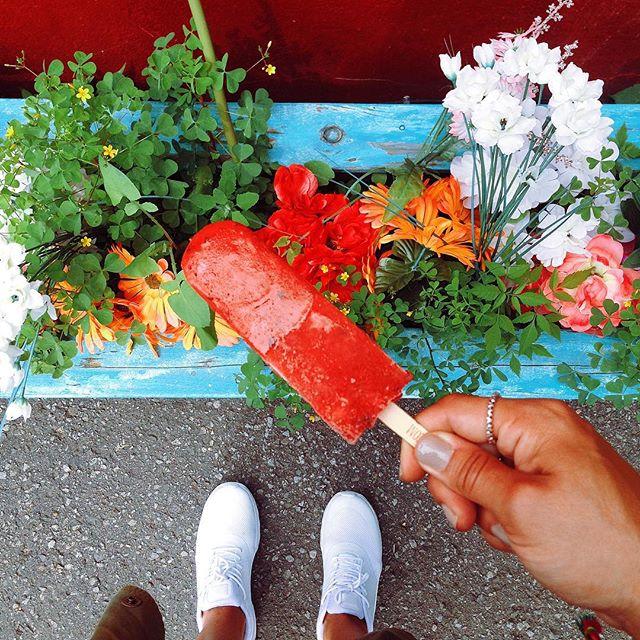 Pops Art Montreal Popsicle TK