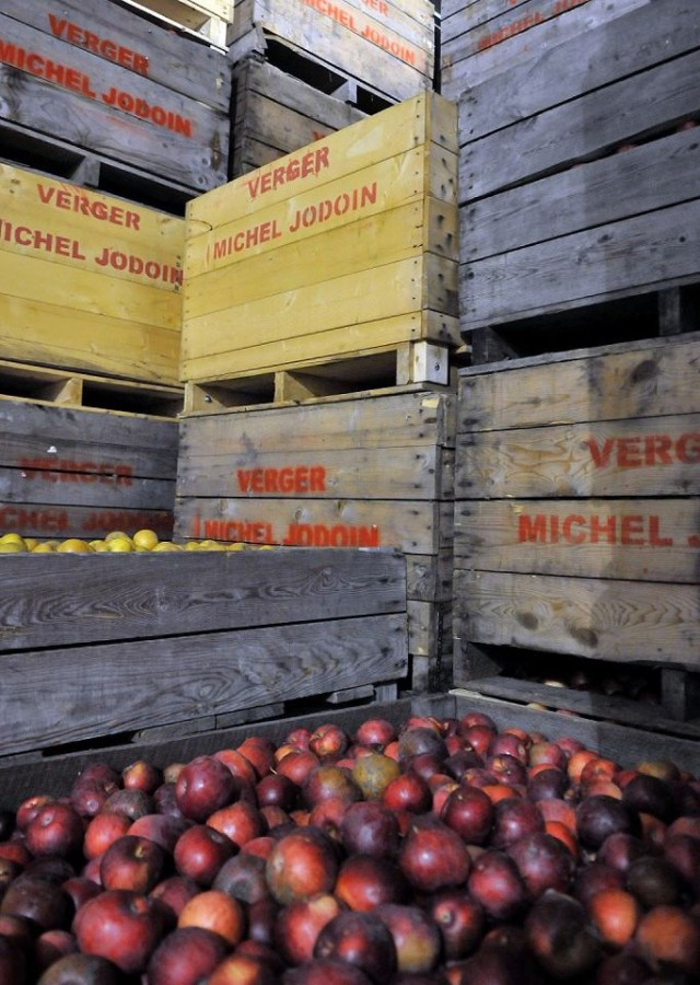 Cidrerie Michel Jodoin Rougemont Apples