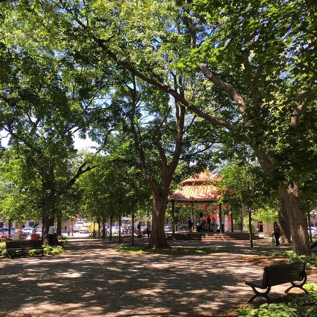 Parc de la Petite Italie Montreal