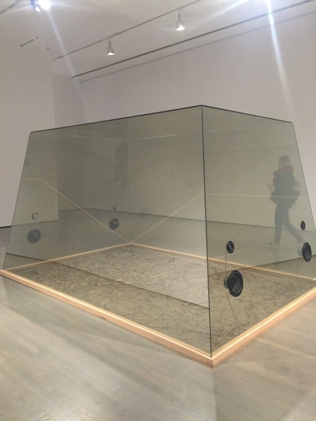 loeuil et lesprit genevieve cadieux mac museum montreal (7)