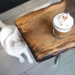 Hang Out With Cats at This Vegan Montreal Eco-Café