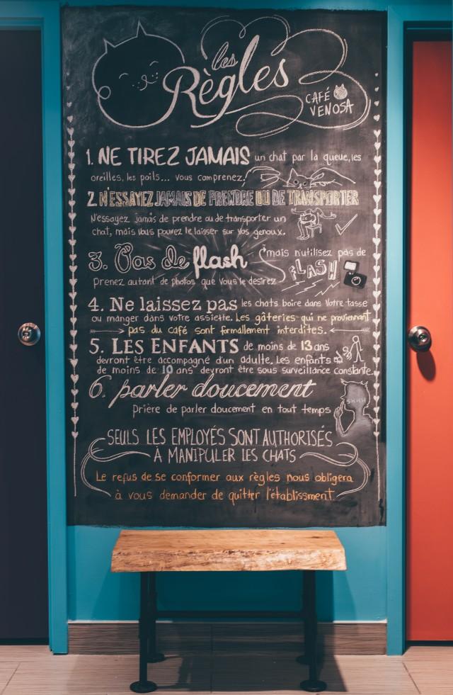 Cafe Venosa Montreal Isabella Luna Gadbois 06