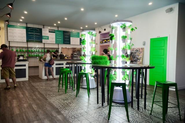 vert-u bar a sante montreal (6)