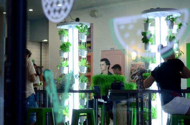 vert-u bar a sante montreal (8)