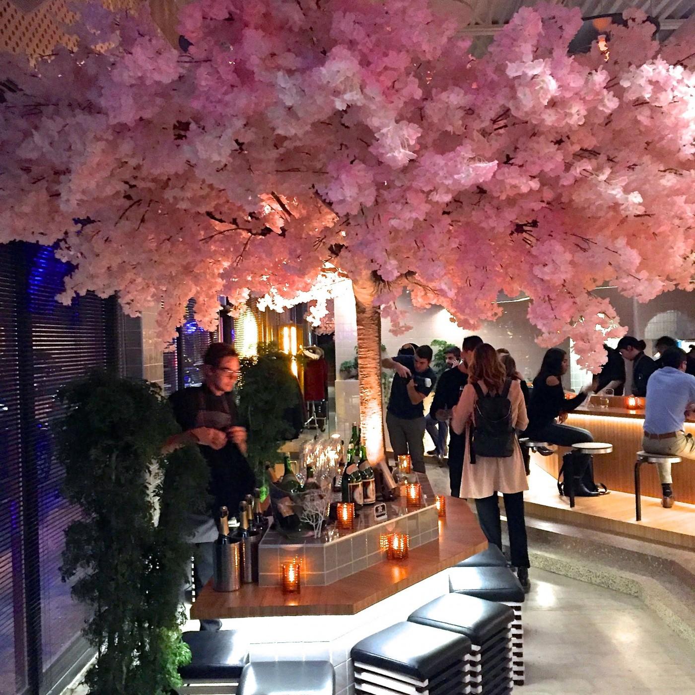 Le blossom bar izakaya montreal village japanese pub 1