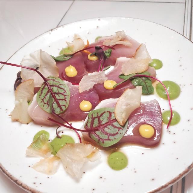 albacore tuna - aiolo-RC