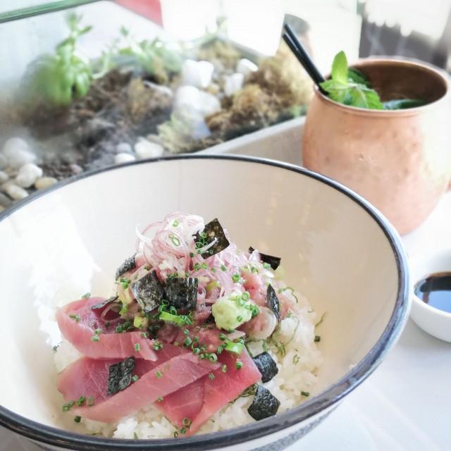 chutoro-tuna-donburi